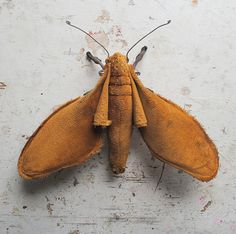 Soft sculpture moth. Unique textile art. by MisterFinch on Etsy