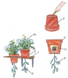 Upside Down Tomatentopf – kreativ-welt.de – Home Maintenance Low Maintenance Garden, Tomato Plants, Plantar, Garden Planning, Garden Projects, Beautiful Gardens, Diy And Crafts, Planter Pots, Home And Garden