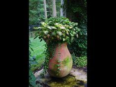 Gardening : decoration-guadeloupe
