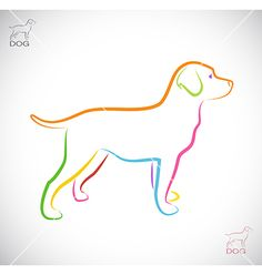 Image of an dog labrador vector by yod67 on VectorStock®