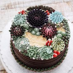 Artista cria bolos incríveis que parecem terrários Cupcakes Succulents, Kaktus Cupcakes, Fancy Cakes, Cute Cakes, Beautiful Cakes, Amazing Cakes, Cake Cookies, Cupcake Cakes, Succulent Wedding Cakes