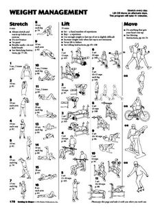82 Top Health and Fitness images | Exercise workouts