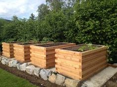 hochbeet in euro palettenrahmen raised bed hochbeet pinterest. Black Bedroom Furniture Sets. Home Design Ideas