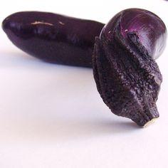 Eggplant by Marsha Vdovin, June 27, 2009