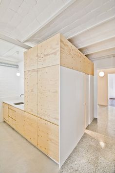 Carles Enrich inserts plywood box inside renovated Barcelona apartment