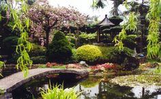 japanese-garden-web.jpg (650×400)