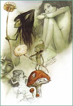 Brian Froud fairies with mushrooms