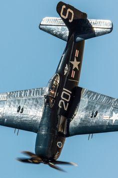 P-40 Warhawk vinyl decal,Curtiss,fighter,Tomahawk,Kittyhawk,WWII,2,Allied,Lg