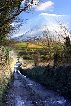 The Galtees, Ireland's tallest inland mountains. Photograph by Pierre Leclerc