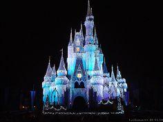 Veryhuman_CC-BY-SA 3.0 #Disney #Florida