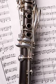 Played the clarinet during junior and senior high school - loved band.