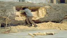 Giuseppe Penone Young Tree inside Old Tree