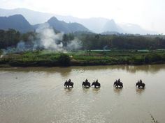Laos. Luang Prabang. The Elephant Village