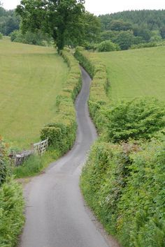 Skinner How Lane - The English Lake District /    Photo by Tony Richards - Comme dans mon rêve...