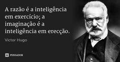 A razão é a inteligência em exercício; a imaginação é a inteligência em erecção…