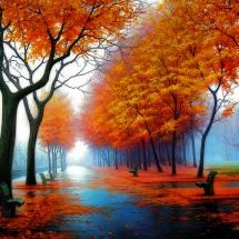 foggy autumn -Pixdaus