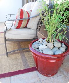 Mulching flower pots with river rock. Tomatoes love heat and thrive when surrounded by river rock Outdoor Ideas, Outdoor Spaces, Outdoor Decor, Patio Ideas, Backyard Ideas, Outdoor Living, River Rocks, River Stones, Home And Garden