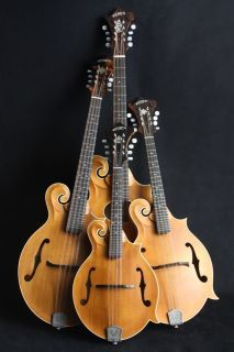 The Mandolin Family voices:  Mandolin, Mandola, Mandocello, and Octave Mandolin. (Same tunings as Violin, viola, cello, bass - aka octave violin)