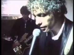 Spinvis - Voordeel van video (2005)
