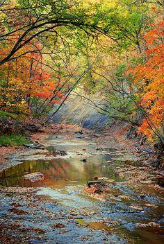 fall scenic photo