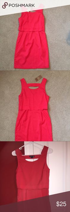 NWT Francesca's Scallop Dress Red/ hot pink scallop dress with a small V-back.  NWT. Size small. LOVED this dress but never winded up wearing it. No trades! Francesca's Collections Dresses