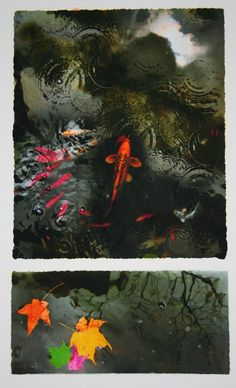 Koi art, pond art, autumn pond, Scenes from the koi pond,a break in the storm , art, photography, autumn leaves, Original Signed on Etsy, $24.99