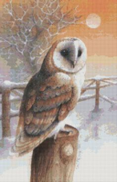 Owl Cross Stitch By David Finney 'Barn Owl' Cross Stitch Kit