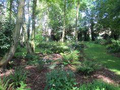 The Fern Nursery, Binbrook