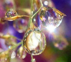 reflejos en gotas de lluvia, Arte fotográfico