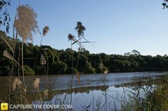 Logan River #CaptureTheCover entry - by Erika in Brisbane's Logan City, Beenleigh Region. Click to enter your photos!