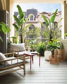Small Balcony Design, Small Balcony Garden, Small Balcony Decor, Balcony Plants, Outdoor Balcony, Patio Design, Backyard Patio, Backyard Landscaping, Outdoor Decor