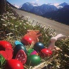 Wir wünschen allen frohe Ostern  Nächstes Jahr wissen wir zu schätzen wenn uns am Ostersonntag die Tante ein dickes Bussi aufdrückt der Onkel die gleiche Geschichte dreimal erzählt oder Mama sagt: Nein du bekommst mit 30 kein Osternest mehr.   Machen wir Heuer das beste daraus Christmas Bulbs, Holiday Decor, Home Decor, Happy Easter, History, Knowledge, Homemade Home Decor, Christmas Light Bulbs, Decoration Home