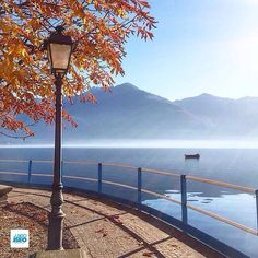 Location: #Lovere (Bg) Photo Credit Instagram: @pieribg _____________________________________  Ti ringraziamo per aver condiviso questa immagine di uno dei comuni del lago d'Iseo (Tag: #visitlakeiseo - #lakeiseo - #lagodiseo) _____________________________________  Thank you for sharing this image of one of the municipalities of Lakeiseo #Lombardia #inLombardia #Lombardiadavivere #visitLombardy #visitBrescia #visitBergamo #Italia #Italy #romanticItaly by @visitlakeiseo