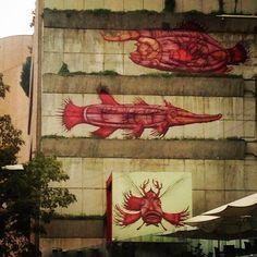 Las imágenes callejeras que no te das cuenta muchas veces que están ahí y que pasas por enfrente de ellas a casa rato!!!   #adrianachula #graffiti #streetart #artecallejero #amomexico #lovemexico #photo #fotografia #caminatas