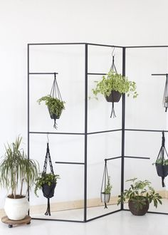 Plant hanger Compendium of Radness. A blog by Diana Moss about fashion, art, design & other cool things.