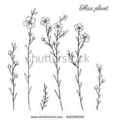 Image result for simple flowers design drawing
