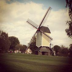 Greetings From Baexem, Limburg #greetingsfromnl #limburg #windmills #dutch #holland