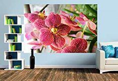 Premium Foto-Tapete Ein Motiv aus dem Kalender Farbzauber Orchideen (versch. Größen) (Size M | 279 x 186 cm) Wands, Design, Home Decor, Pictures, Dekoration, Erfurt, Orchids, Calendar, Wallpapers