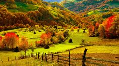 Serbia, the beautiful Balkan country has to offer a lot of natural sights. The Zlatibor Mountain is one of the most beautiful natural places in Serbia Garden Wallpaper, Scenery Wallpaper, Fall Wallpaper, Bright Wallpaper, Landscape Wallpaper, Leaves Wallpaper, Mobile Wallpaper, Countryside Wallpaper, Hd Nature Wallpapers