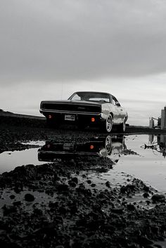 We all love our Muscle Cars. Check out your favorite Muscle Car Man Cave Gear… Rat Rods, 1968 Dodge Charger, Charger Rt, Automobile, Us Cars, Cars Usa, Hot Rides, American Muscle Cars, Sexy Cars