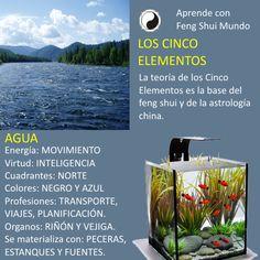 Água - 5 elementos