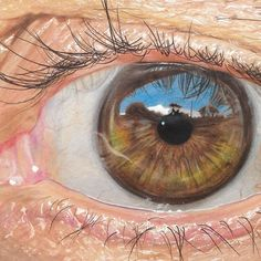 hyperrealistic eye drawn by Texas-based colored pencil and graffiti artist, Redosking.