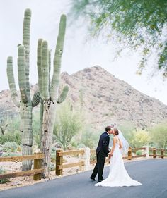 desert wedding with giant saguaro cactus - Melissa Jill Photography