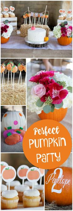 You have to see this perfect pumpkin party! See more party ideas at CatchMyParty.com!