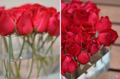 Arranjo Floral | Rosas Flutuantes | 2013 | Realização e Foto: Fabiana Bellentani