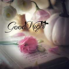 Romantic Good Night, Cute Good Night, Good Night Gif, Good Night Messages, Sweet Night, Good Night Quotes, Night Time, Night Night, Good Night Thoughts