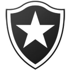 Histórico de posições - Botafogo (Ano a ano, todos os campeonatos, todos os resultados) http://www.ricaperrone.com.br/historico-botafogo/