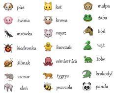 zwierzęta (animals)