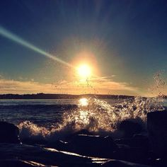 """.@trentboz 
