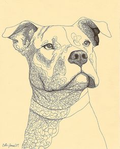 Animal Drawings Dogs Drawings Pitbull - Pets For U Pitbull Tattoo, Pitbull Drawing, Bull Tattoos, Animal Sketches, Animal Drawings, Drawing Sketches, Cute Drawings, Dog Drawings, Simple Drawings